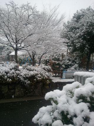 2011-02-11 10.28.11.jpg