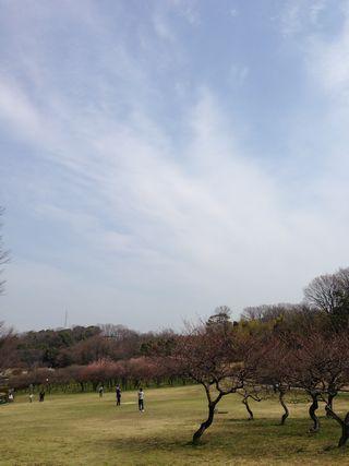 2013-03-24-02.jpg