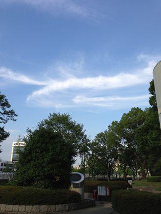 2013-07-04.jpg