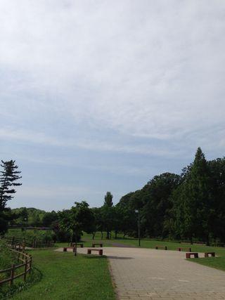 2013-08-17-01.jpg