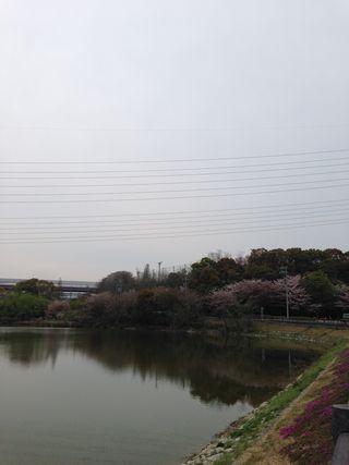 2014-04-13-01.jpg