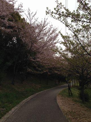 2014-04-13-02.jpg